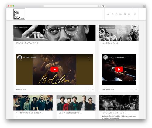 WordPress website template Enpine - music.melideastudio.com