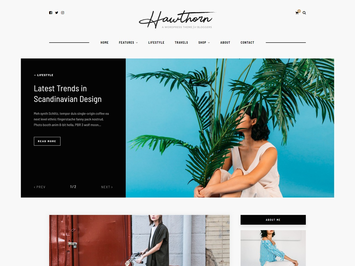Hawthorn WordPress blog template