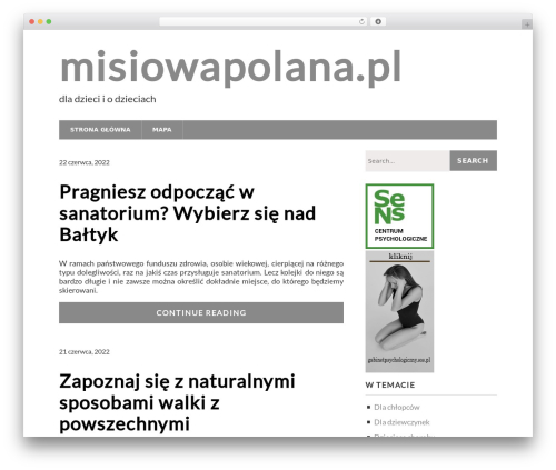Modern Business best free WordPress theme - misiowapolana.pl