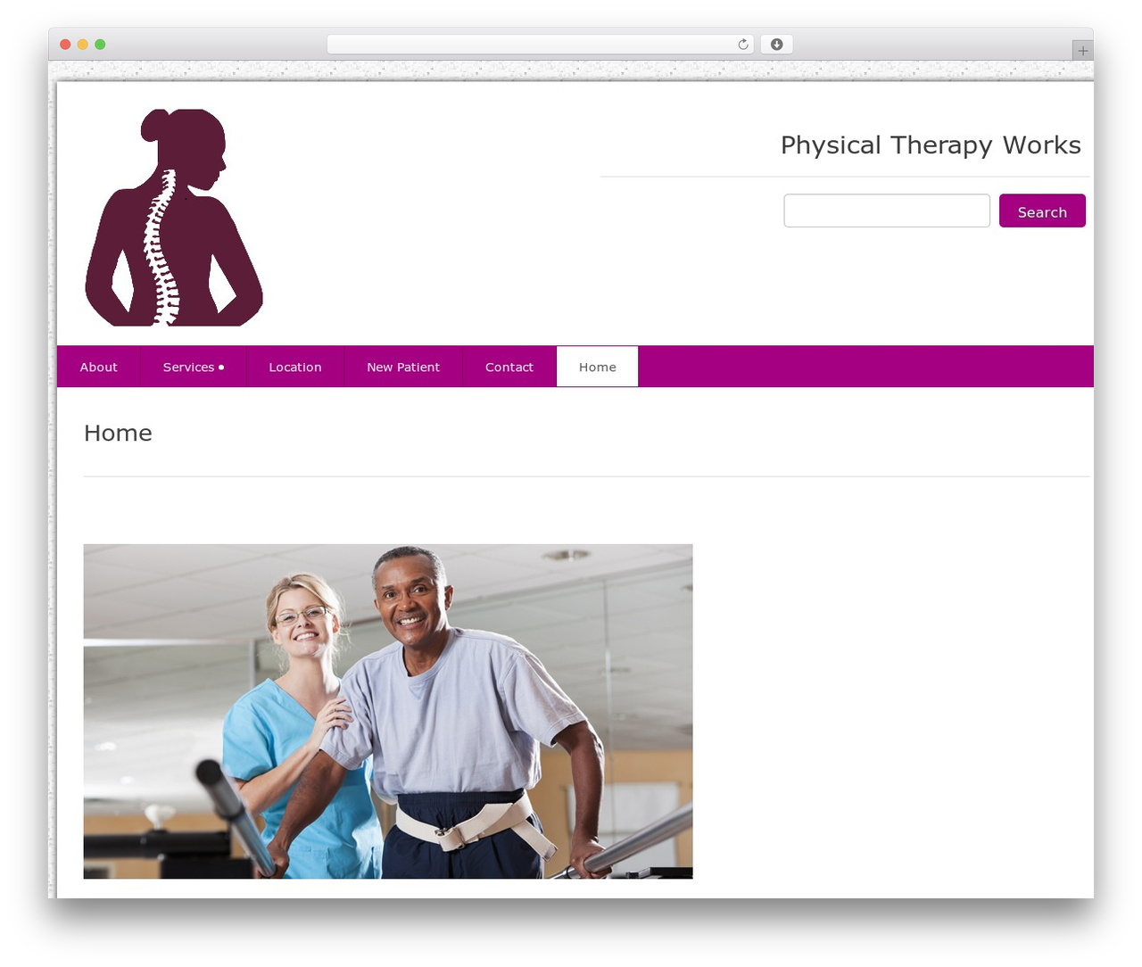 Best WordPress theme Health-Center-Pro - mplsphysicaltherapy.com