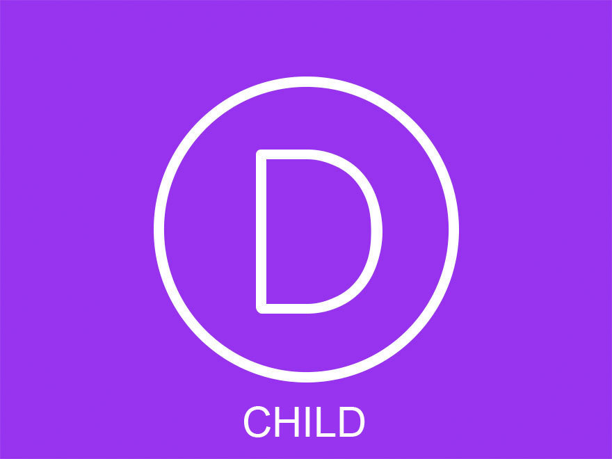 Divi-child Theme premium WordPress theme
