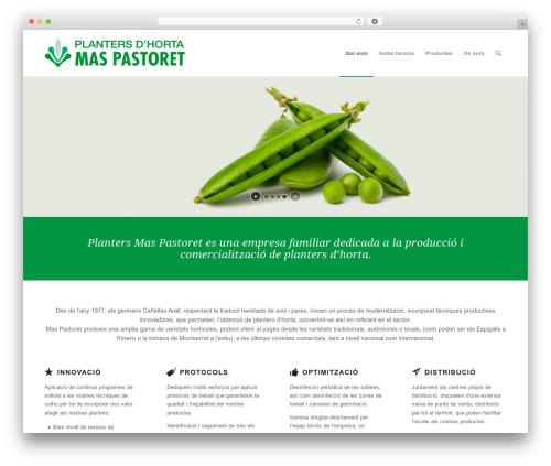 Enfold WordPress store theme - maspastoret.com