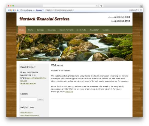 Customized theme WordPress - murdockfinancialsvcs.com