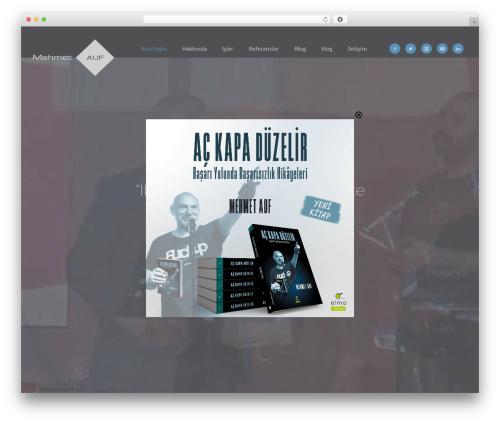WordPress taptap-by-bonfire plugin - mehmetauf.com