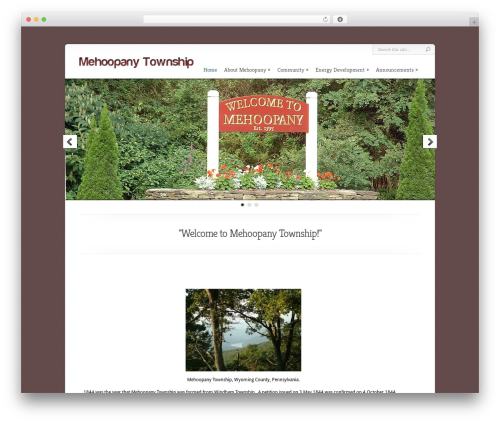 WordPress theme Chameleon - mehoopanytwp.org