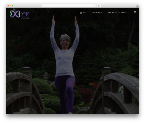 WordPress website template Eyepress - maryanns-yogaforseniors.com