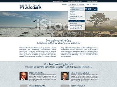 WP theme Monterey Eye Theme