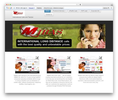 Business lite WordPress free download - mibassa.net
