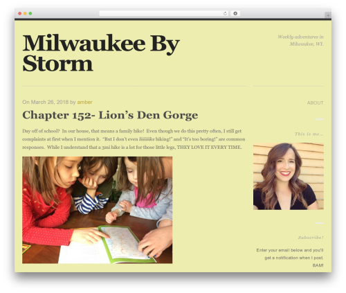 Ravage WordPress theme - milwaukeebystorm.com