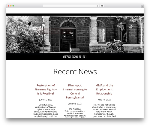 WordPress website template DMS - mcclaw.com