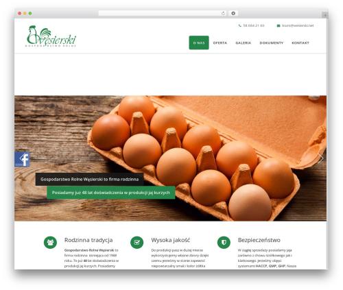 Berry WordPress website template - wesierski.net