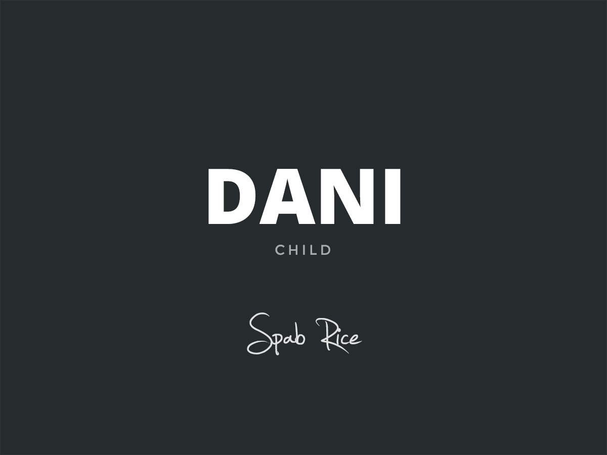 Dani Child WordPress theme