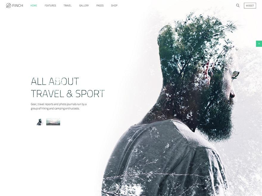 Finch WordPress theme