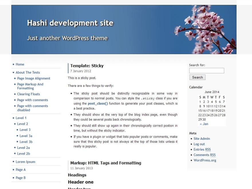 Hashi WP template