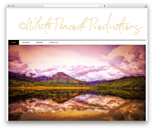 laveo WordPress theme free download - whitepeacockproductions.com