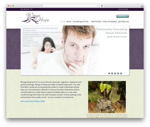 MAD theme WordPress - wingscounseling.com