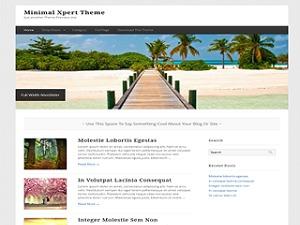 Minimal Xpert top WordPress theme