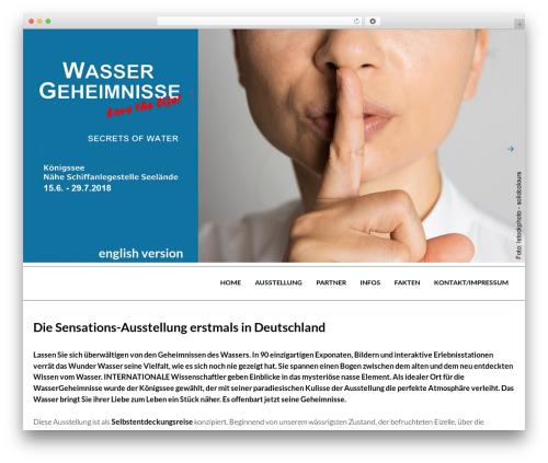 OneEngine best WordPress template - wassergeheimnisse.eu