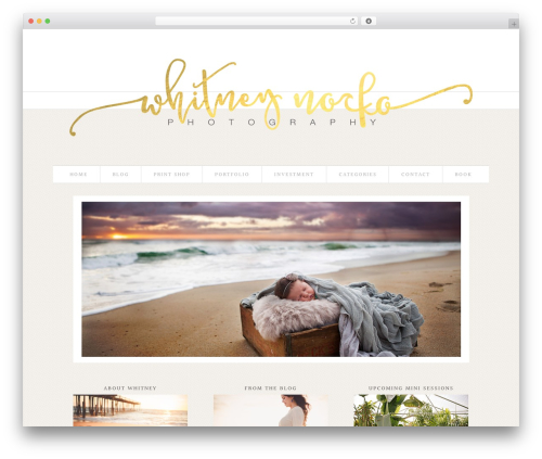 ProPhoto WordPress blog theme - whitneynorko.com
