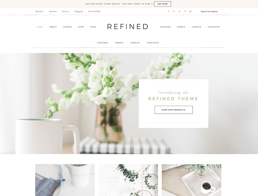 Refined Theme WordPress shopping theme