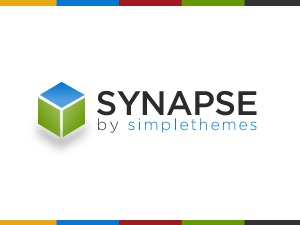 Synapse Child Theme WP template