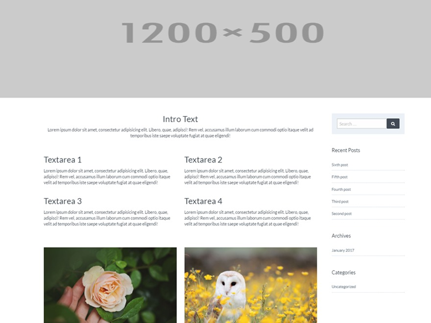 Template WordPress DesignCo