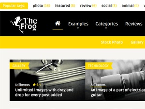 The Frog best WordPress magazine theme