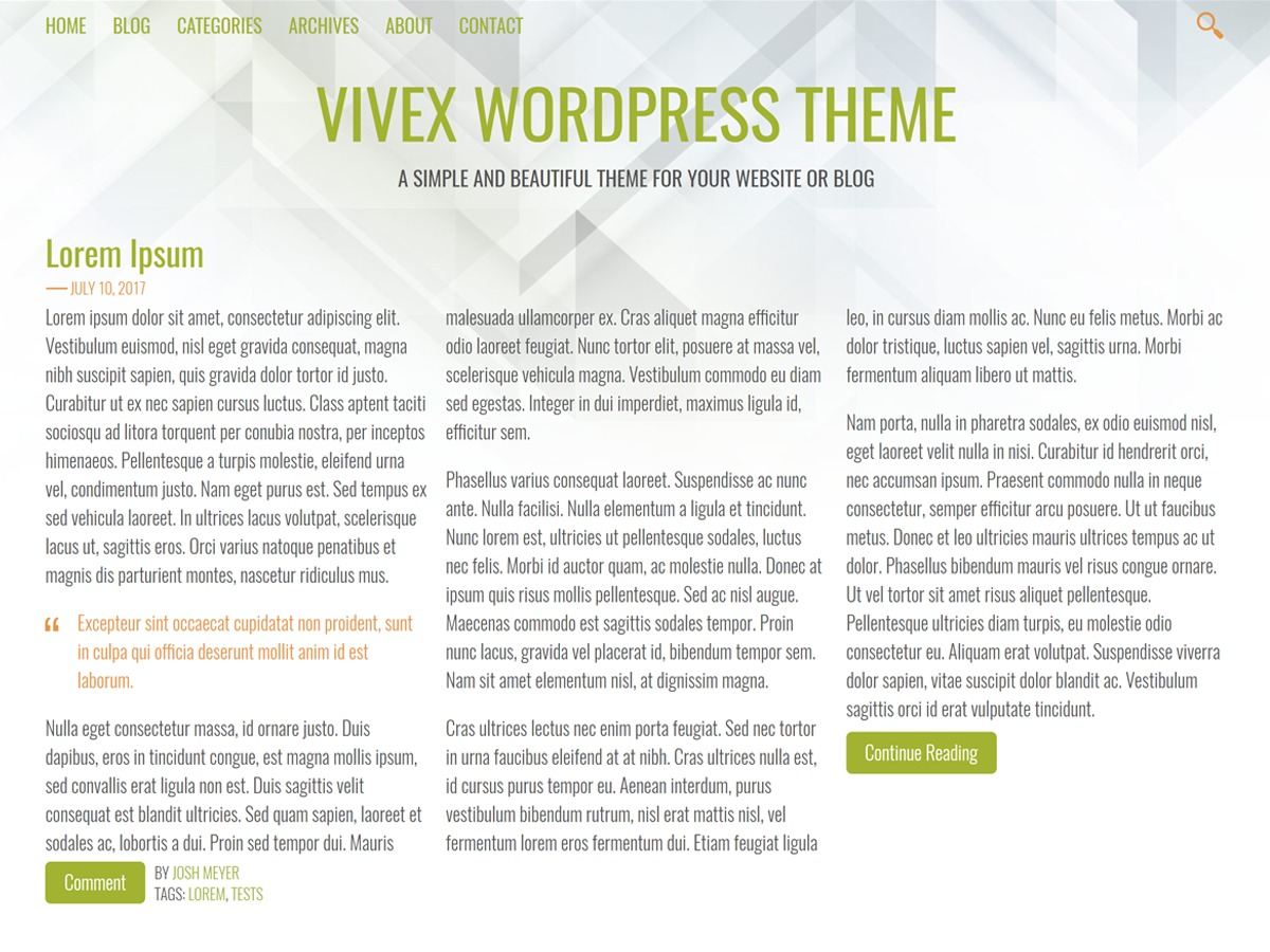 Vivex free WP theme