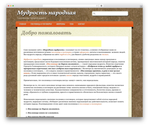 ePublishing WP theme - mydrost.com
