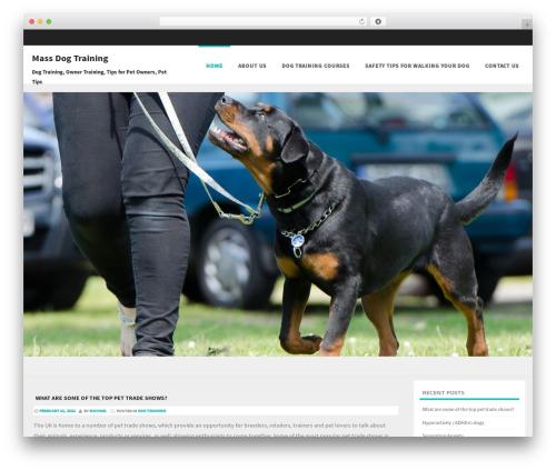 Formation best free WordPress theme - massdogtraining.com