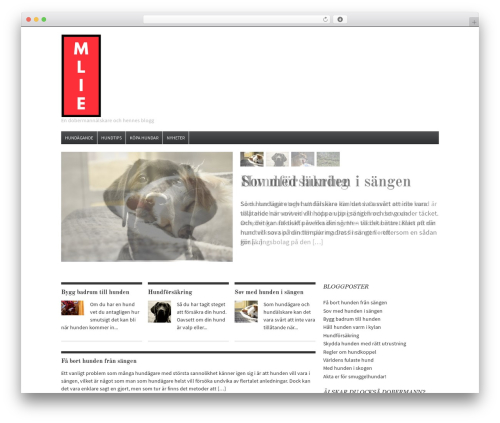 Daily Headlines top WordPress theme - mlie.se