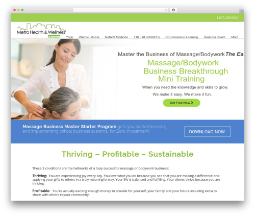 Avada massage WordPress theme - metromassage.net