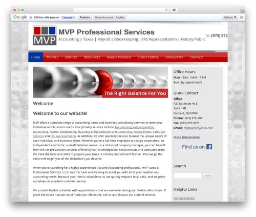 Customized WordPress theme design - mvpproservices.com