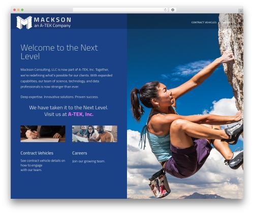 VozX WordPress template for business - macksonconsulting.com