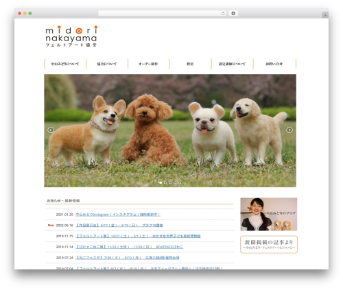Best WordPress theme APT PC Theme - midorinakayama.com