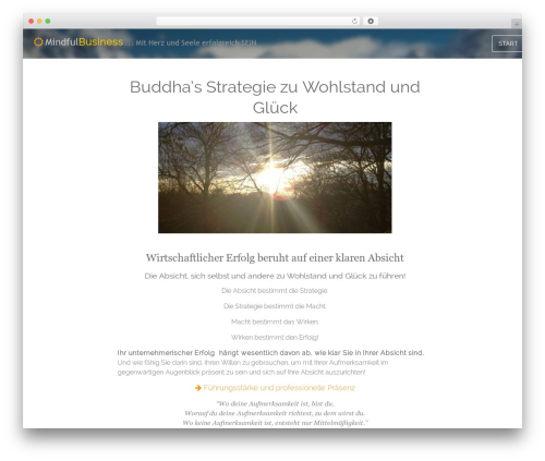 Paradigm WordPress template for business - mindfulbusiness.de