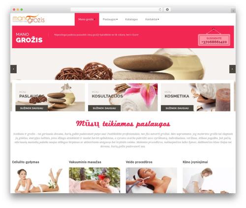 WordPress dmsguestbook plugin - manogrozis.lt