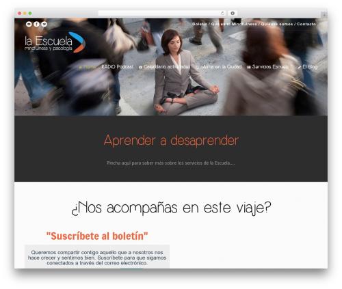 Versatile WordPress theme - mindfulnessypsicologia.com