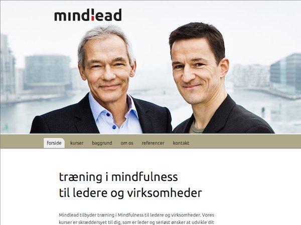 mindlead child WordPress template