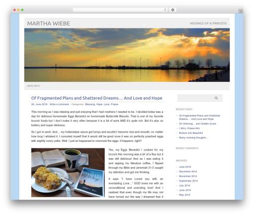 picolight best WordPress template - marthawiebe.com