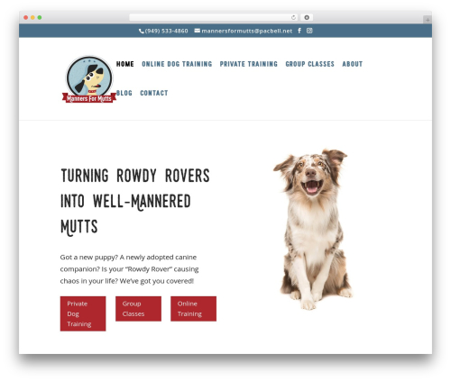 Template WordPress Divi - mannersformutts.com