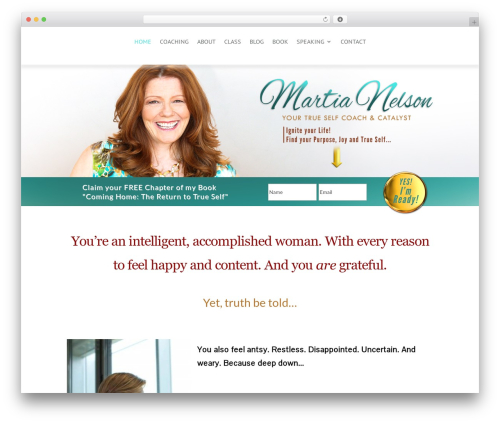 Theme WordPress Divi - martianelson.com