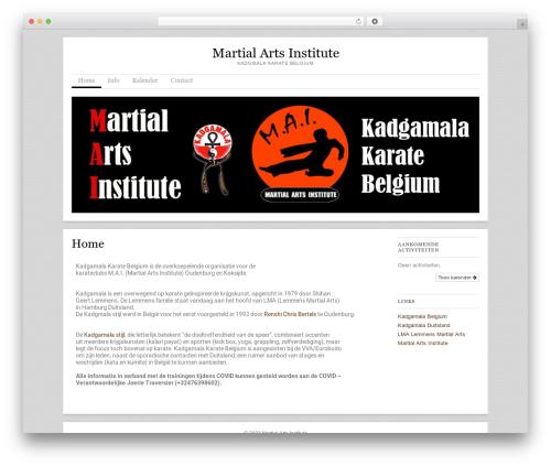 WordPress theme Skirmish - martialartsinstitute.be