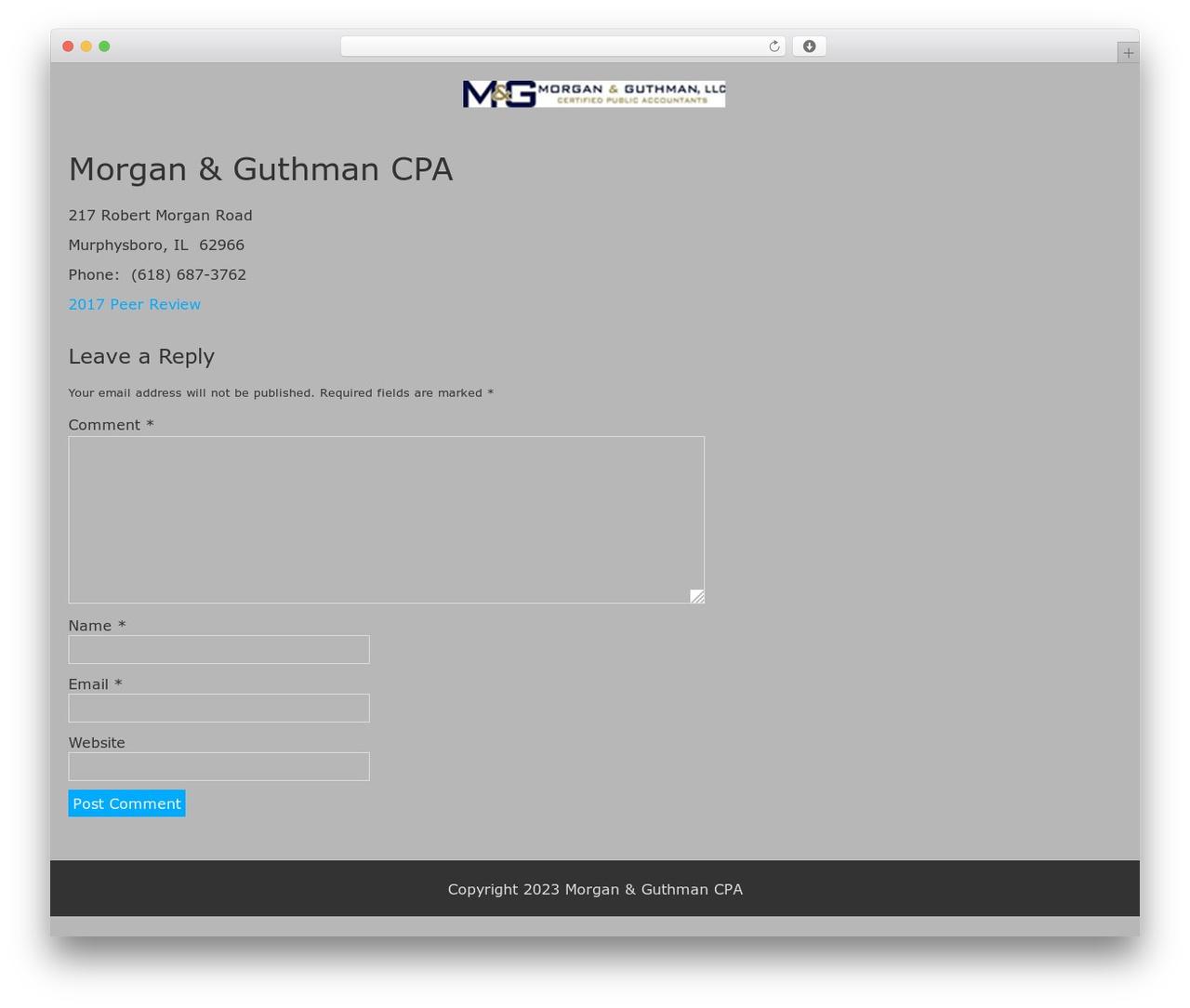 BlueGray template WordPress free - morganandguthmancpa.com