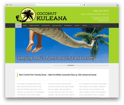 FITNESS-WP WP theme - mauispikelesspalmtrimming.com