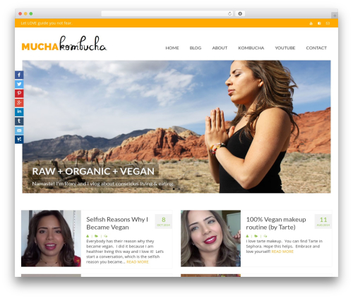 Virtue free WordPress theme - mucha-kombucha.com