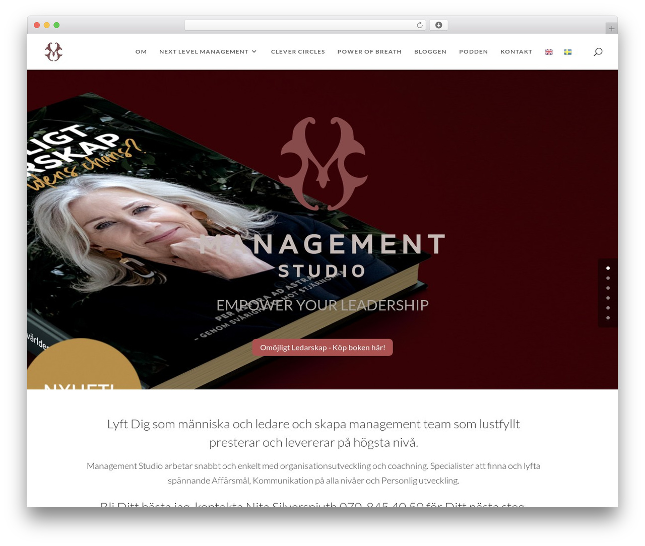 WP theme Divi - managementstudio.se