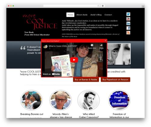 Free WordPress Popup Dialog Box – Responsive Message Box plugin - morecooljustice.com