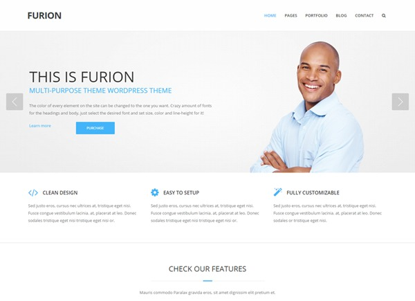 Furion personal WordPress theme