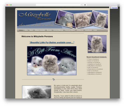 Weaver theme WordPress - mitzybellepersians.com